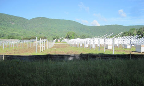 Solar field with Helical Piles